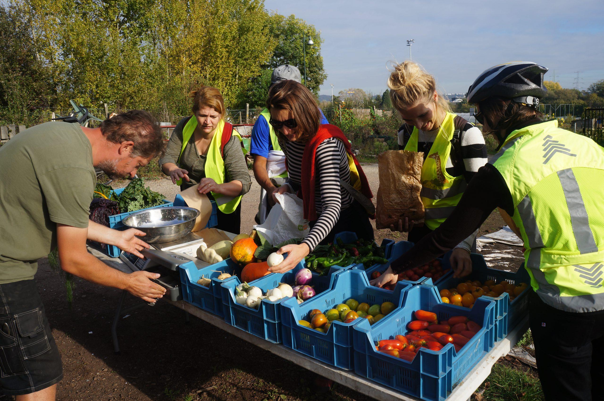 Projets d'agriculture urbaine à vélo